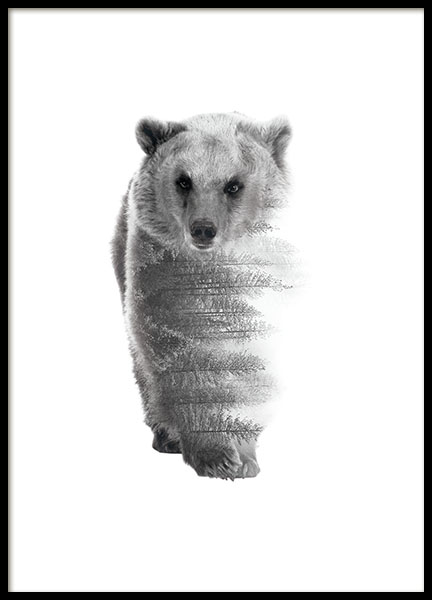 81588 Forest bear B&W 50x70